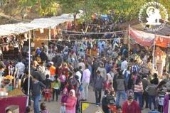 Shilpgram Festival 2012 Day3, 23 December.